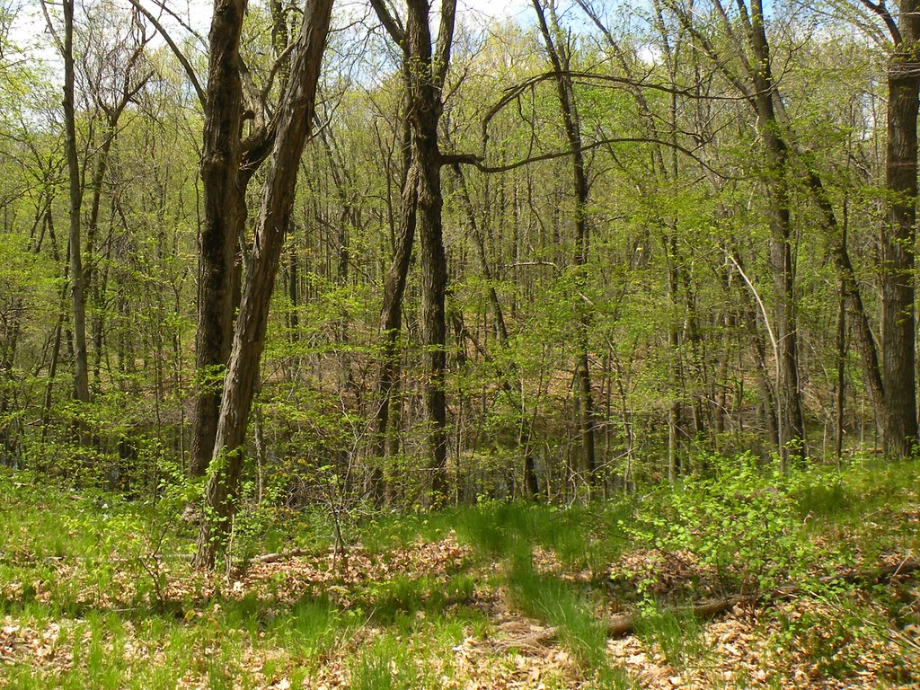 Northern Moraine Spring Art Tour