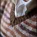 Striped Vest Collar Detail