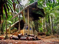 Feitio House at Ceu do Jurua-1