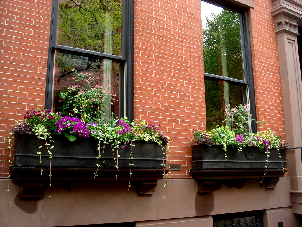 Window Boxes In Brooklyn Heights On Columbia Heights Ann Althouse Flickr