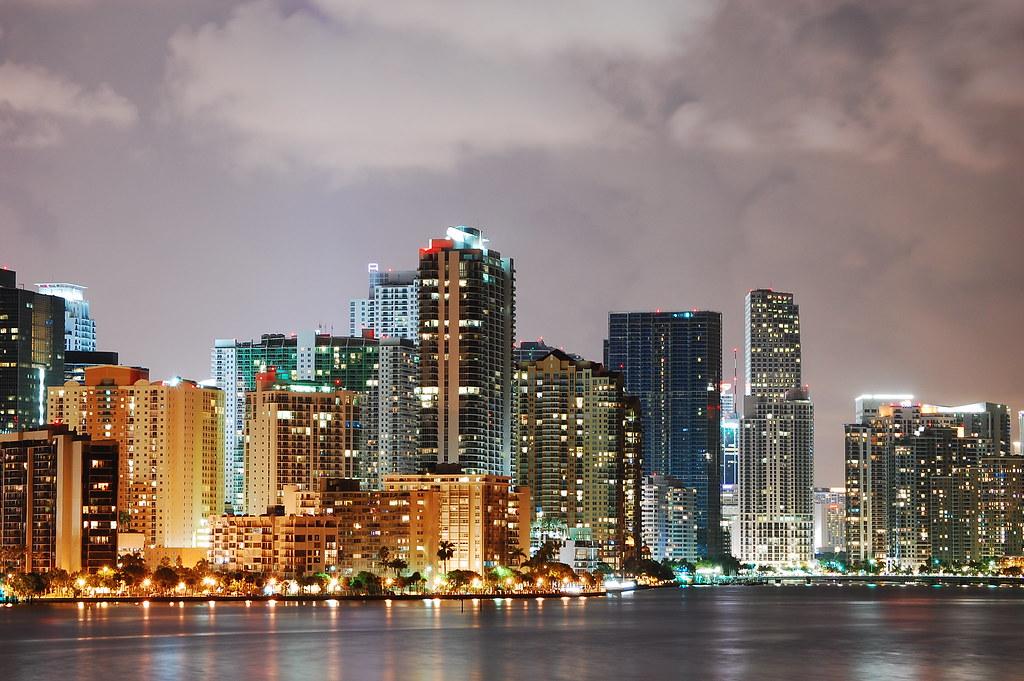 Miami Palmed Skyline