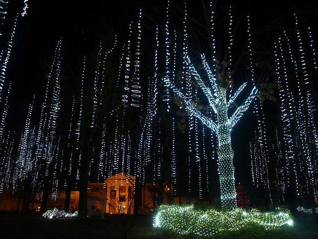 Hanging Up Christmas Lights