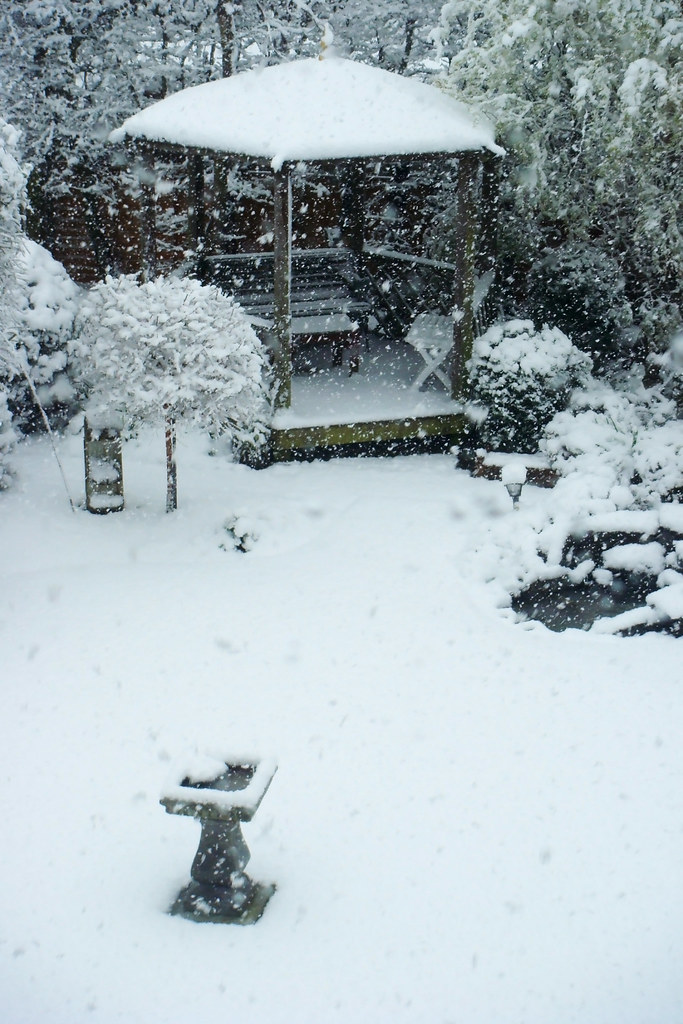 Snowy garden chris wood flickr - Gardening mistakes maintaining garden winter ...