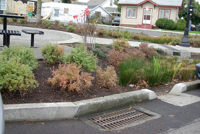 Overflow Drain For The Natural Drainage System Rain Garden