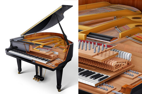 Grand piano cutaway small digital media 2008 this for Small grand piano