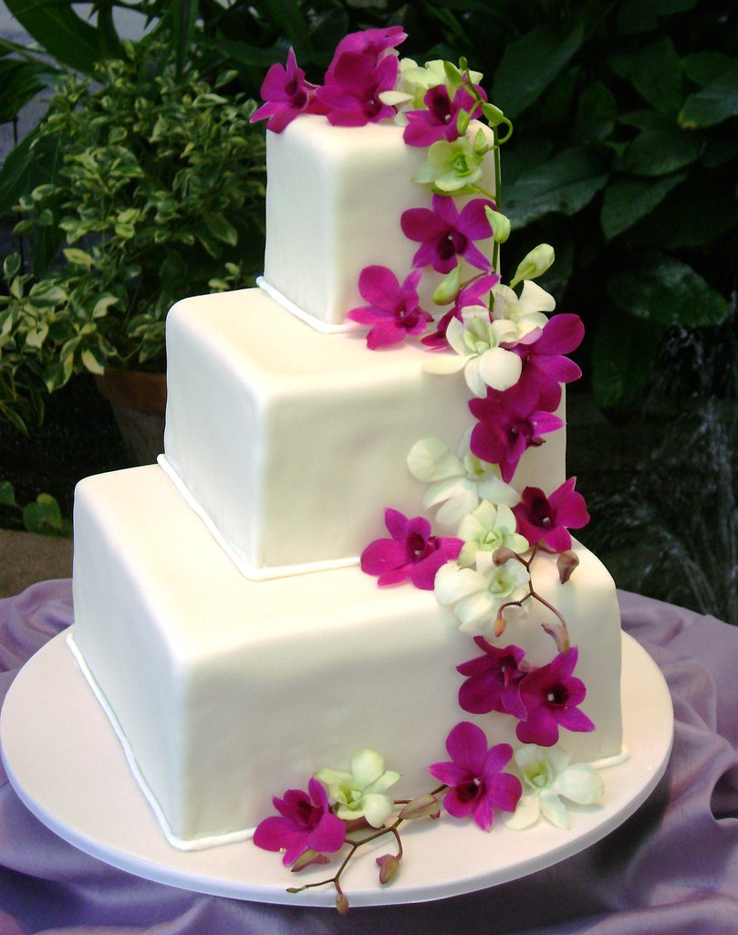 wedding cakes square square wedding cake stephaniethebaker 25520