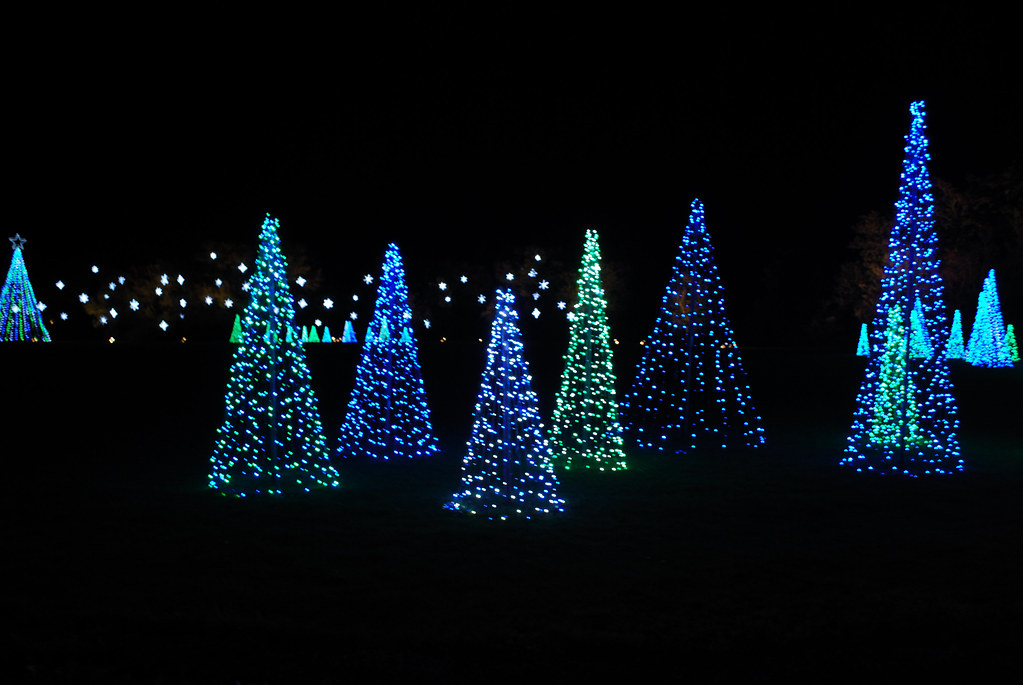 Blue And Green Christmas Tree Lights