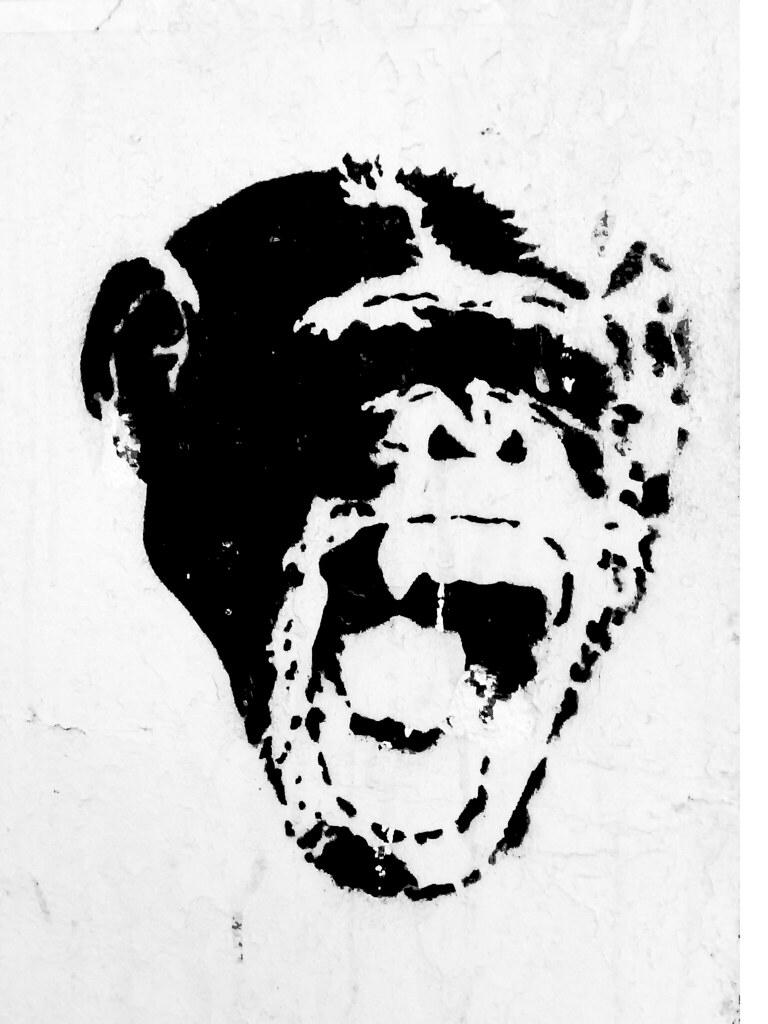 Monkey Stencil Monkey Stencil Buenos