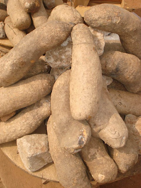 yam tubers for sale in the market research work help to im flickr. Black Bedroom Furniture Sets. Home Design Ideas