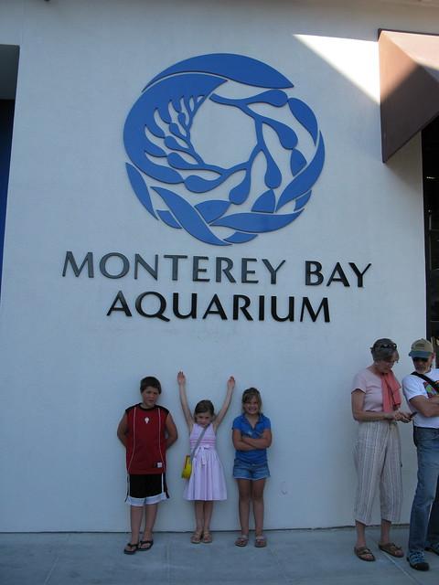 Monterey Aquarium Flickr Photo Sharing