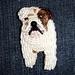 Shackle- Bead-embroidered English Bulldog dog pin