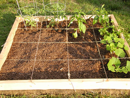 Square Foot Gardening | by Robert Goodwin