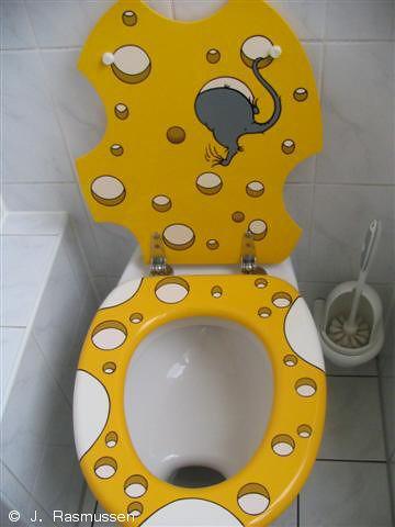 toilet seat menarik