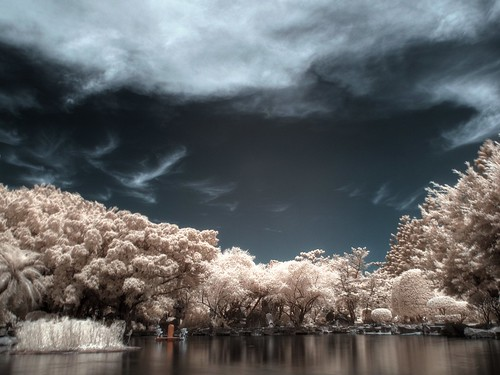 Infrared trees and clouds | by LoBsTeRbig