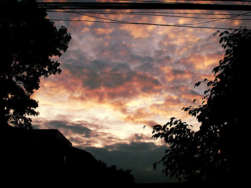 Photo Friday - Dusk | by Liz Villegas