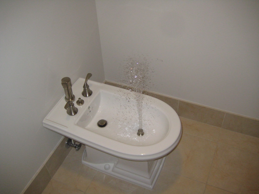 Yep that 39 s a baday or bidet thanks molly 39 s wedding flickr - What is a bidet used for ...