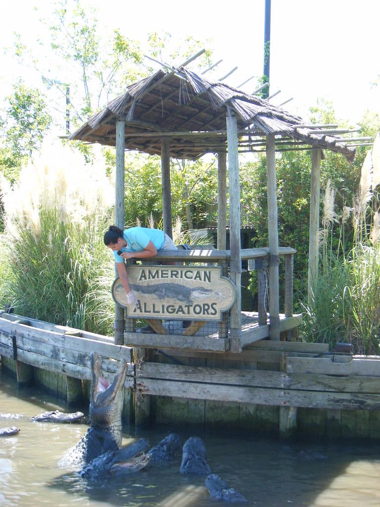 Alligator Adventure North Myrtle Beach Sc Trampoline