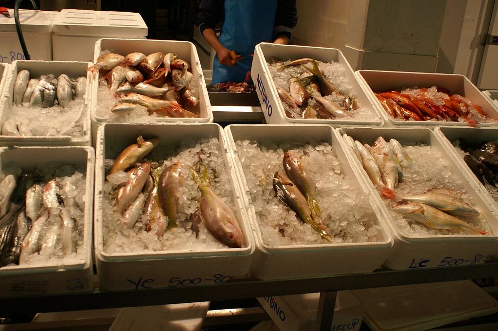 Wholesale fish market birmingham 12 bovine spongiform for Wholesale fish market