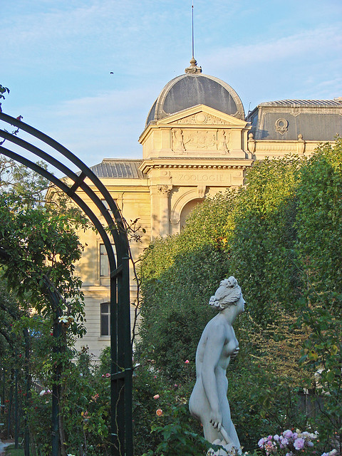 La roseraie du jardin des plantes paris h ritier du for Au jardin de jean pierre