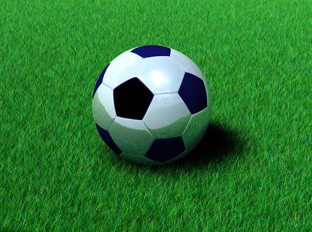 Chrome Soccer Ball On Grass
