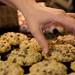 chewy oatmeal chocolate chunk (365.339)
