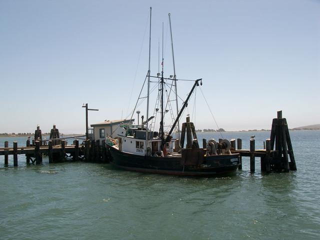 Bodega bay fishing boat ian holmes flickr for Bodega bay fishing reports