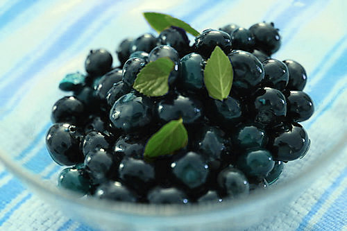 Blueberries in Gin Syrup | by thebittenword.com