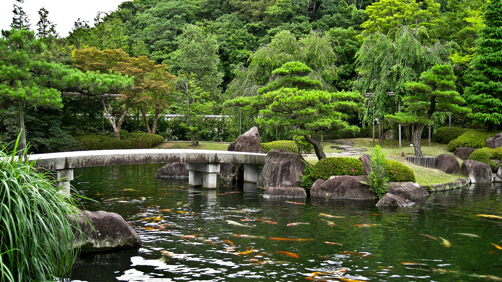japanese garden koi pond greg flickr