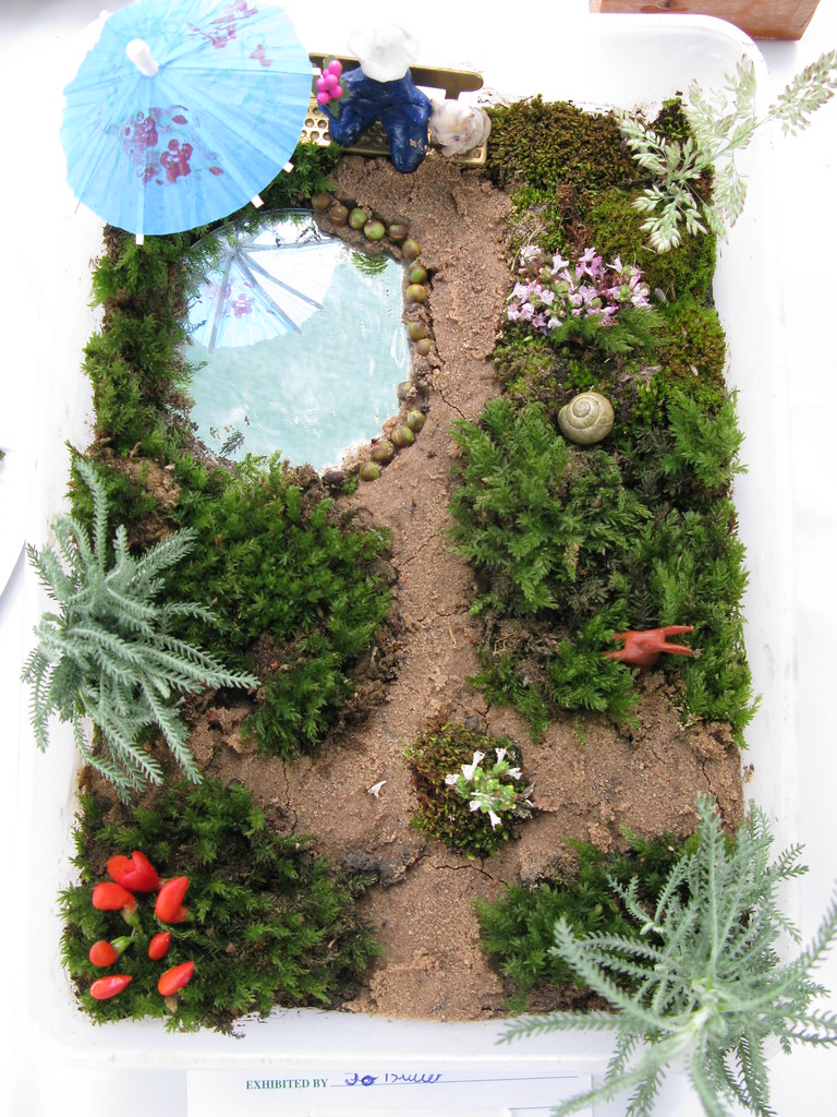 The Children's Miniature Garden Competition