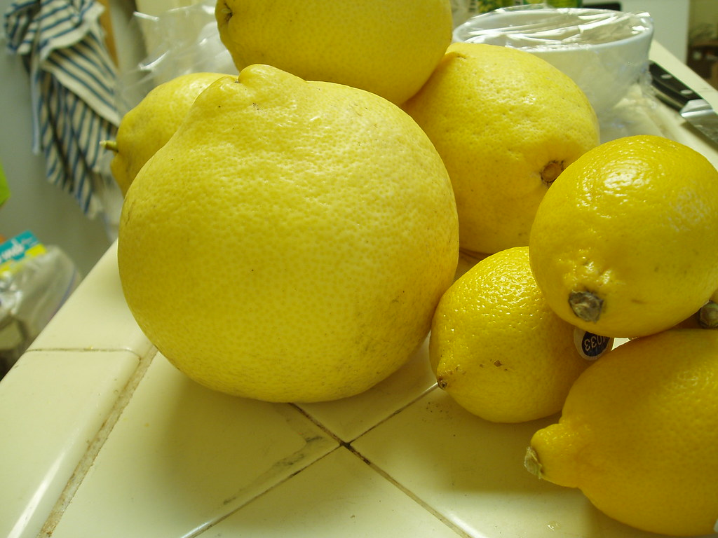 big lemons little lemons 02