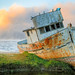 Shipwreck of Point Reyes at Twilight