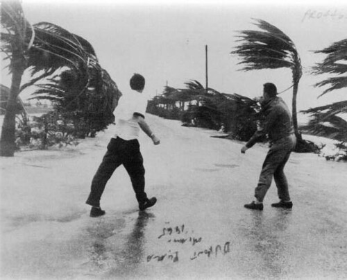 View From The Dupont Plaza Of Men Walking In Hurricane Bet