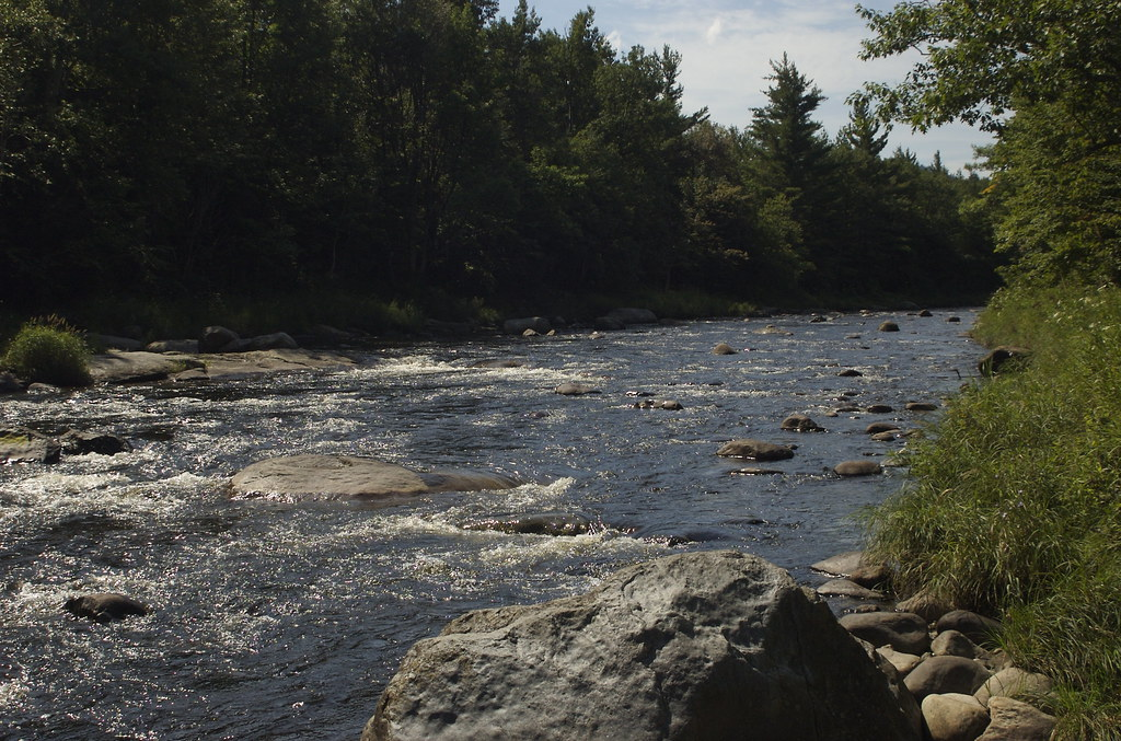 The dream mile the west branch of the ausable river in for York river fishing report