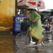 Rain, Hoi An