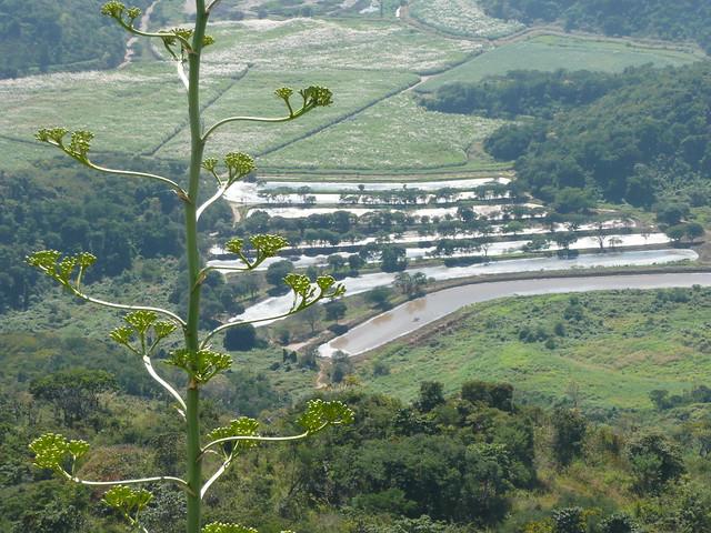 Lagunas artificiales en la hacienda el palmar lugar for Lagunas artificiales construccion