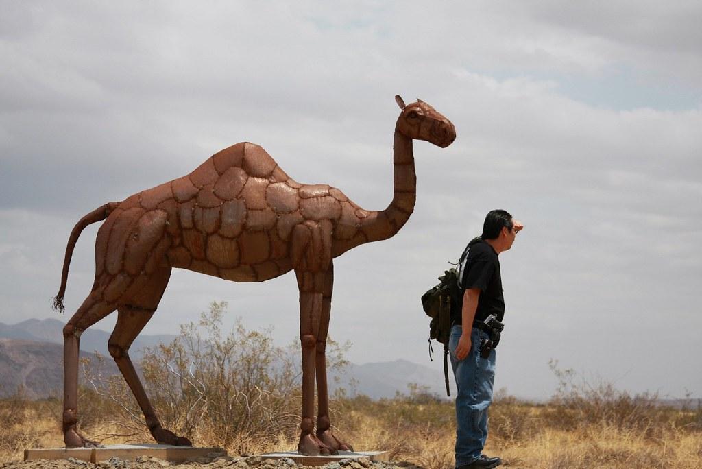 Lyrics sally the camel has 1 hump songs about sally the ...