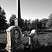 Oakwood Cemetery - Troy, NY - 05