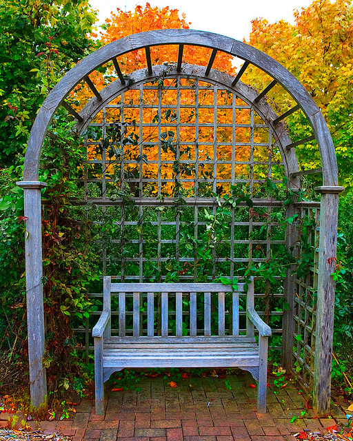 Garden bench art flickr for Garden archway designs
