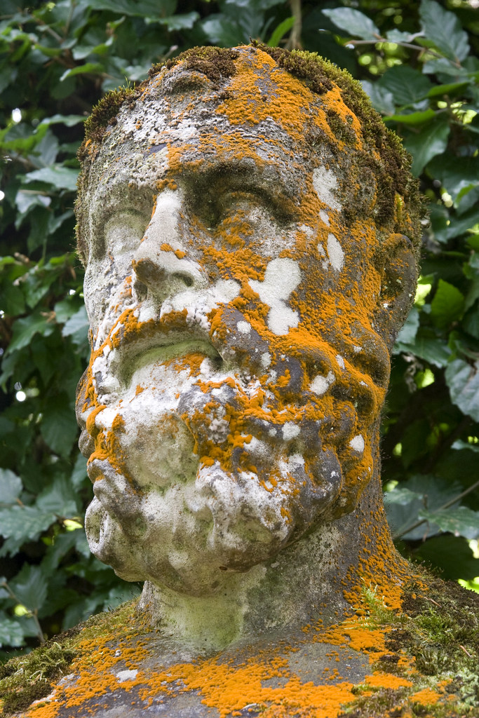 Lichen And Moss Covered Statue Chatsworth House Gardens