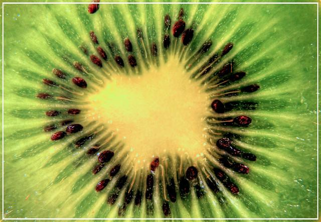 Kiwi Fleur Jl Nancy Flickr