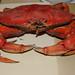 A Cranky Crab