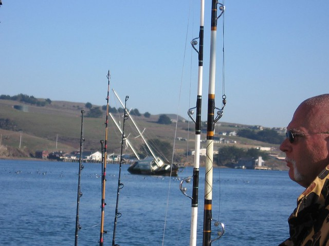 Run a ground humboldt squid fishing in the new sea for Bodega bay fishing reports