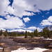 Serene Sierras