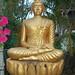 A Buddha