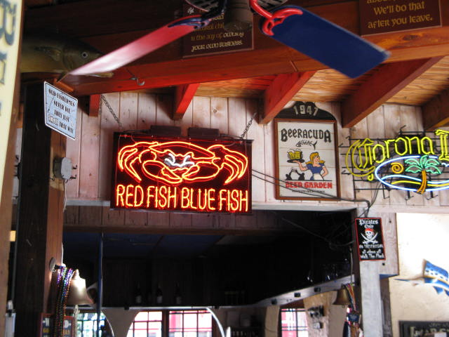 Red fish blue fish bar key west red fish blue fish bar for Red fish blue fish key west