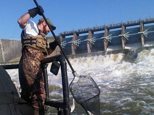 Gone fishing lake livingston brian bartram scoops up a for Lake livingston fishing report