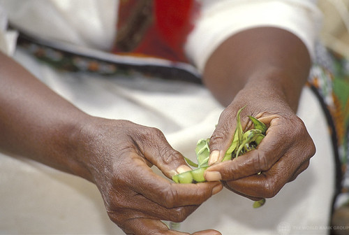 Shelling peas | by World Bank Photo Collection