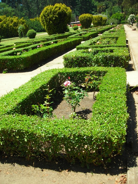 Jardin franc s jard n bot nico nacional vi a del mar for Jardin botanico vina
