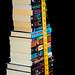 50 Book Challenge : 20 Book Milestone