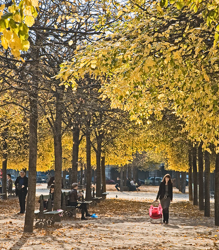 Autumn in Paris - Place de Vosges | by dicktay2000